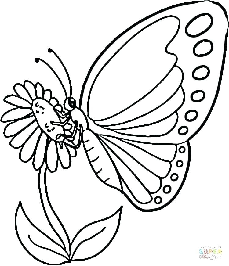 750x872 Detailed Butterfly Coloring Pages Detailed Butterfly Drawing