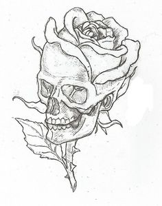 236x299 Flower Sketch Illustration And Imagination Flower