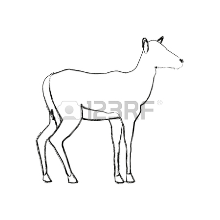 The Best Free Impala Drawing Images Download From 127 Free Drawings