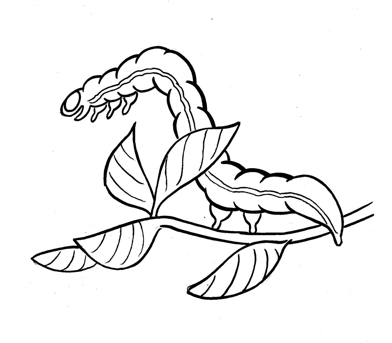 1500x1311 More Bugs Amp Animals Steve Lafler Comics Amp Illustration