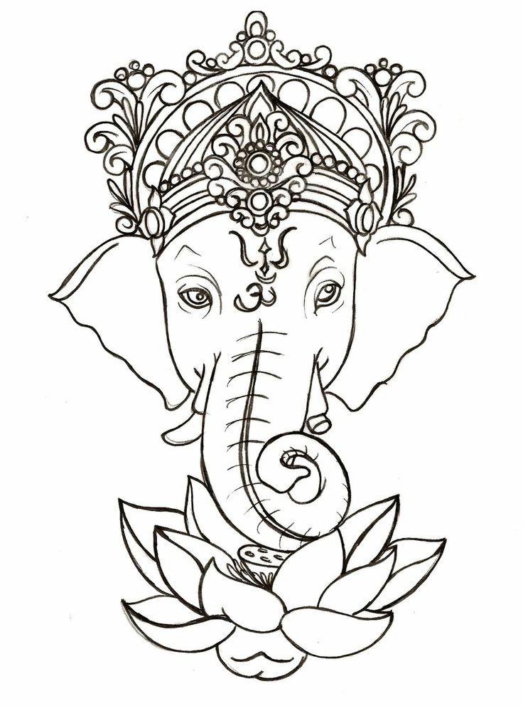 736x992 Indian Elephant Draw