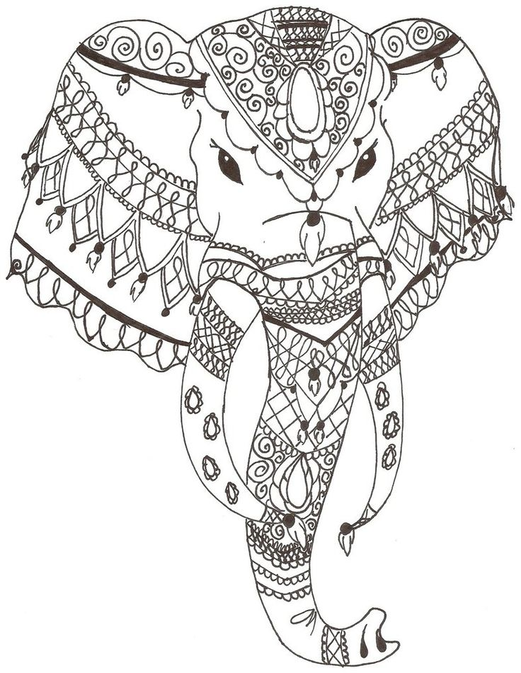 India Elephant Drawing