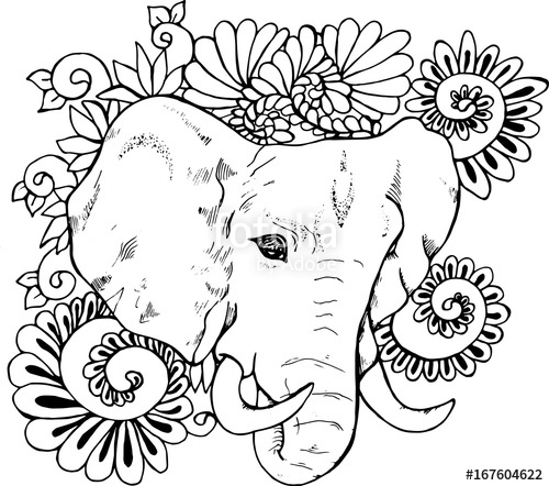 500x442 Blackd White Drawing Elephant On A Background