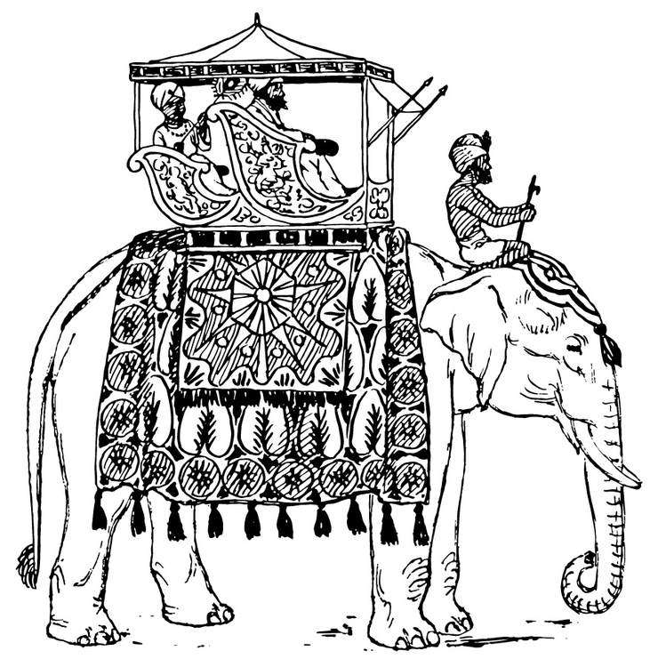 731x750 Coloring Page Elephant In India