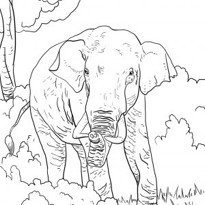 300x300 Coloring Pages Ofdia Gate Newdia Gate Coloring Pages