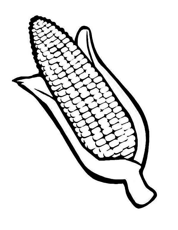 600x776 Coloring Page Of Indian Corn Tags Coloring Page Of Corn Autumn