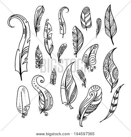 450x470 Bird Feathers. Hand Drawing Indian Vector Amp Photo Bigstock