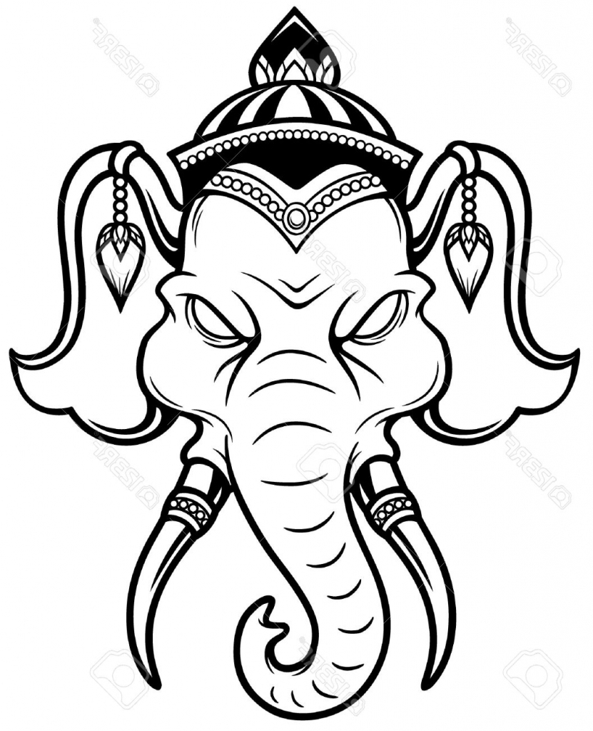 831x1024 Indian Elephant Face Drawing