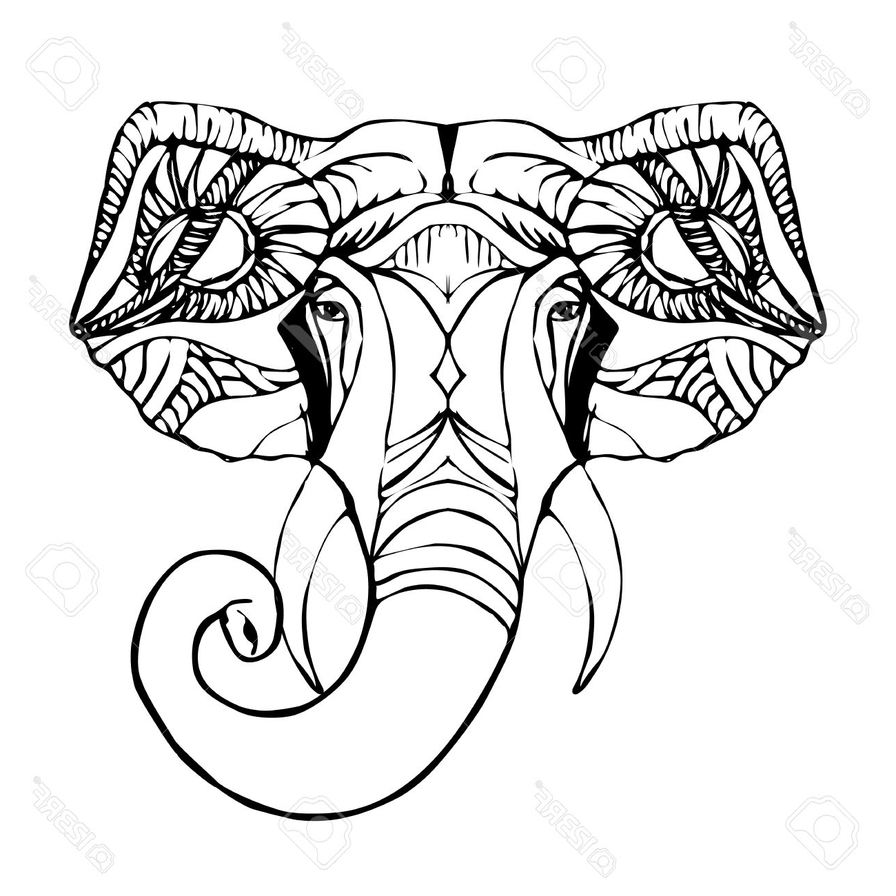 1300x1300 Indian Elephant Face Drawing