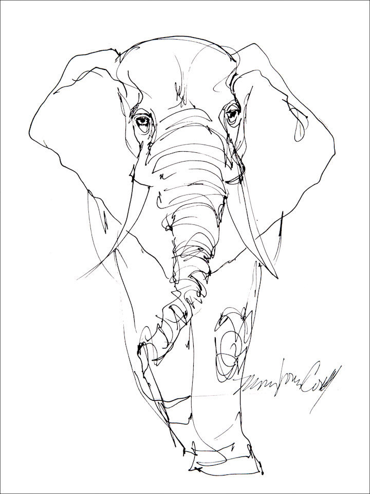 720x960 Elephant Line Drawing. Greeting Card From Reproduction