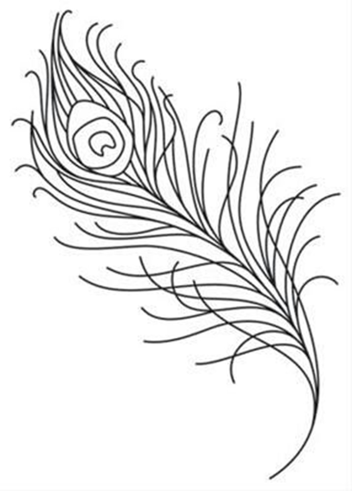 716x998 Drawn Lines Feather