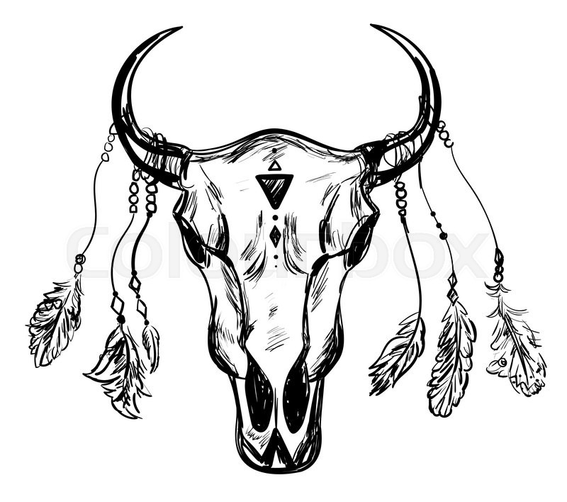 800x708 Buffalo Skull With Feathers. Hand Drawn Sketch. Native American