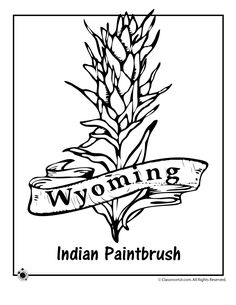 236x305 Top 81 Paintbrush Coloring Pages
