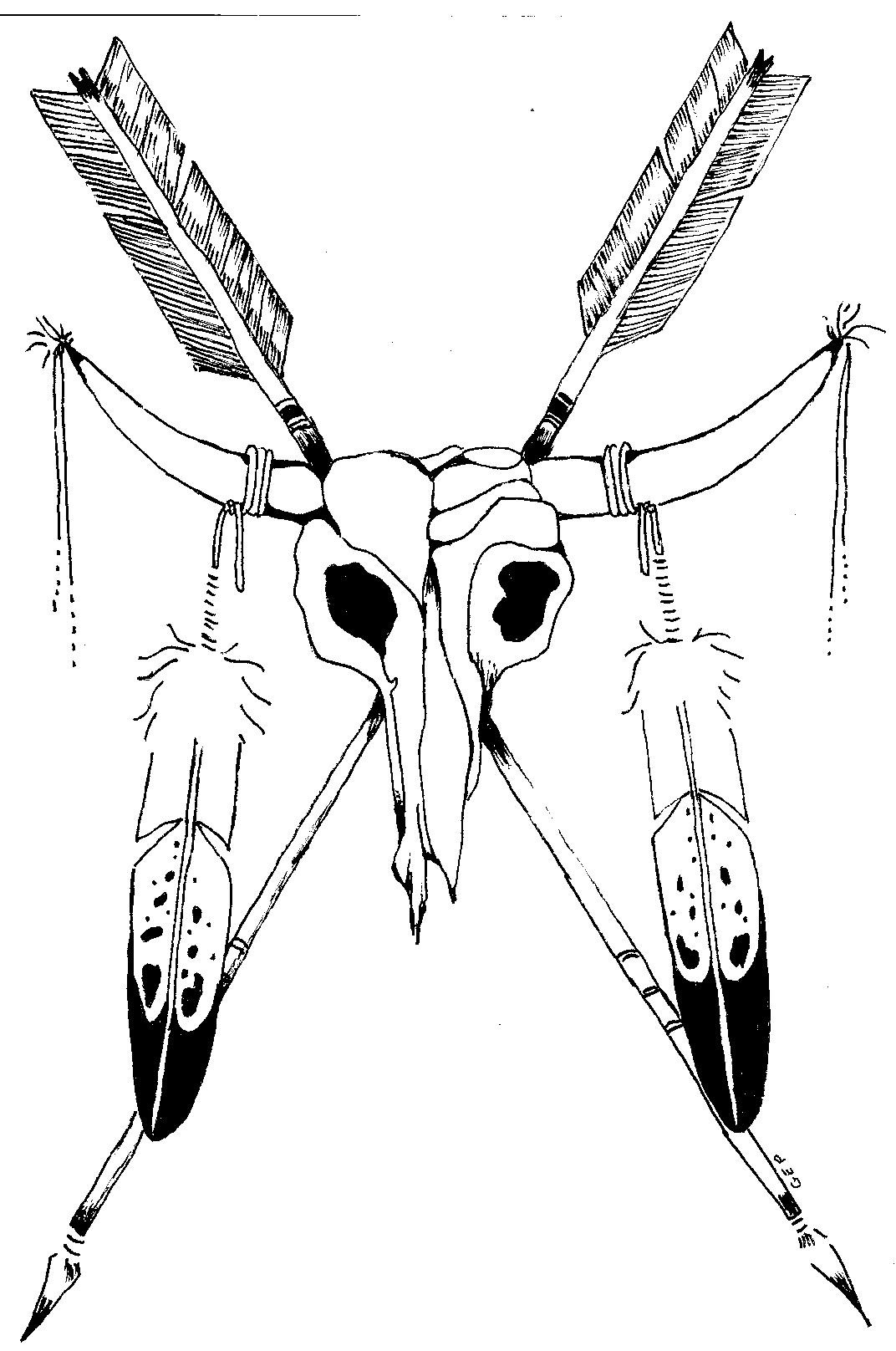1072x1616 Native American Spear Drawing Fishing Tricks