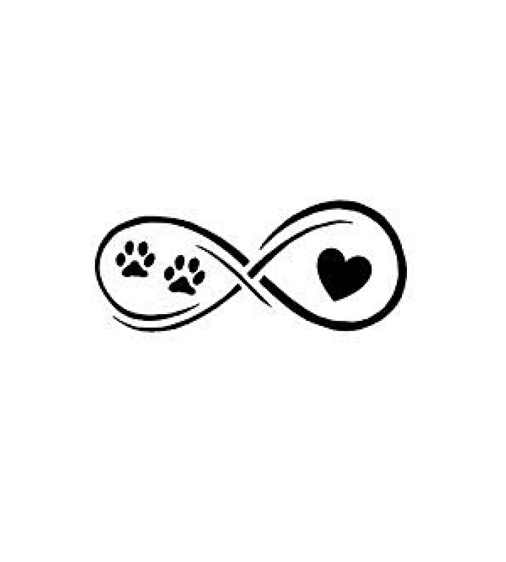720x800 Dog Cat Lover Gift Infinite Love Infinity Symbol Long Sleeve T