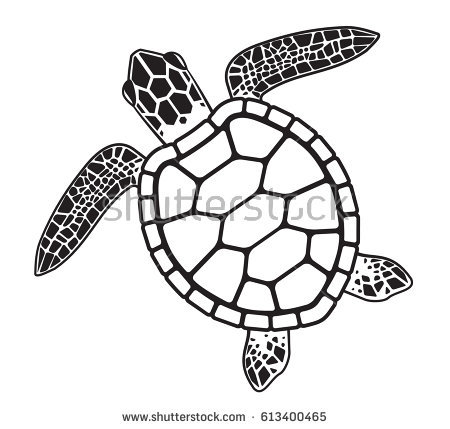 450x429 Coloring Pages Turtle Drawings Simple Drawing 1000 Images About