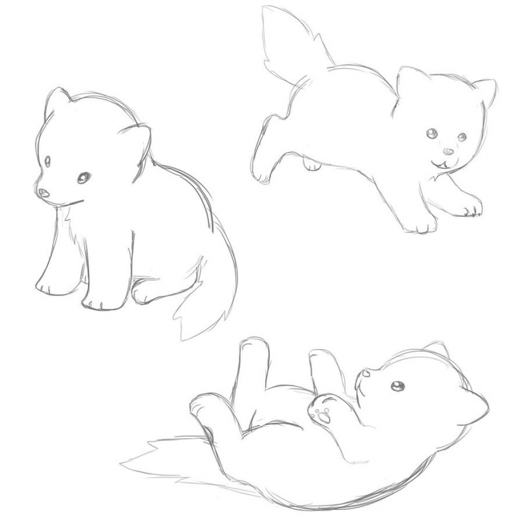 1024x1024 Anime Dog Sketch Cute Dog Sketches