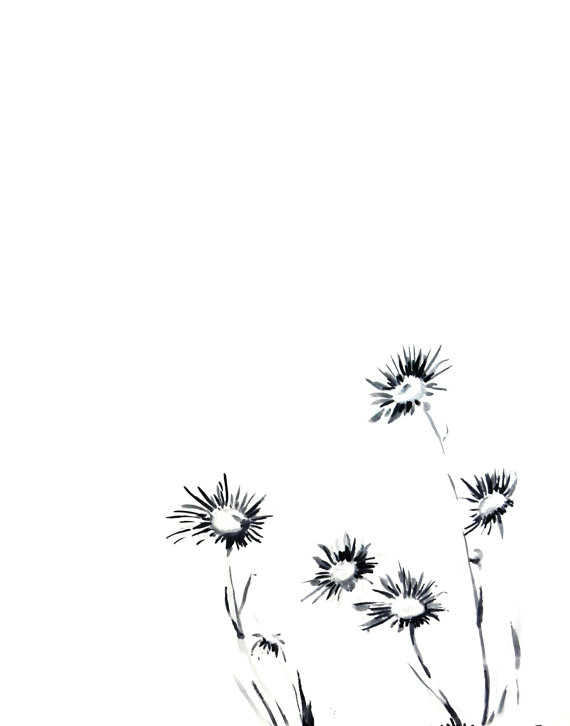 570x726 Daisy Flowers Ink Drawing Art Print, Minimalist Black And White