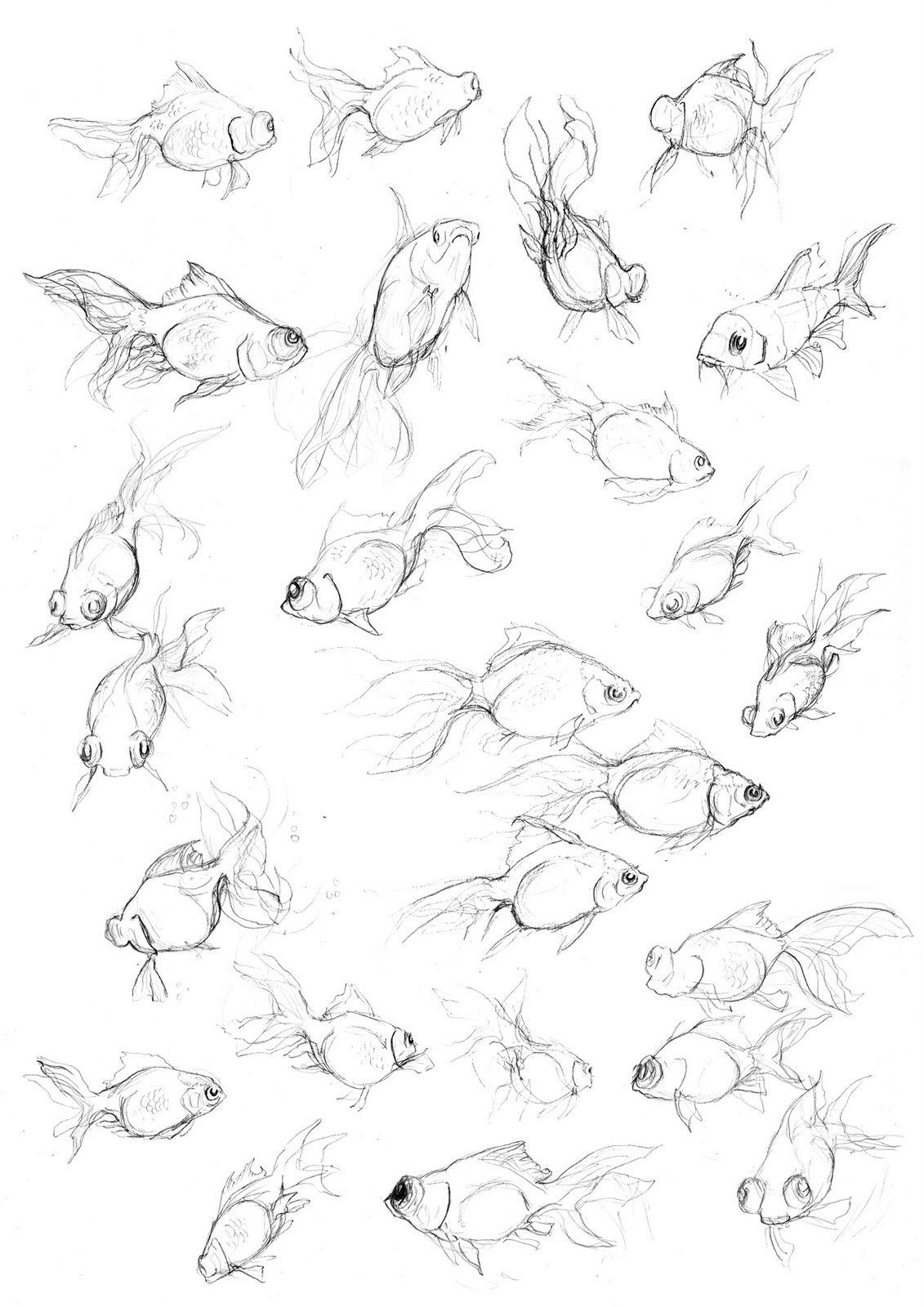 1131x1600 Amy Holliday Illustration Fish Studies Exploring Movement