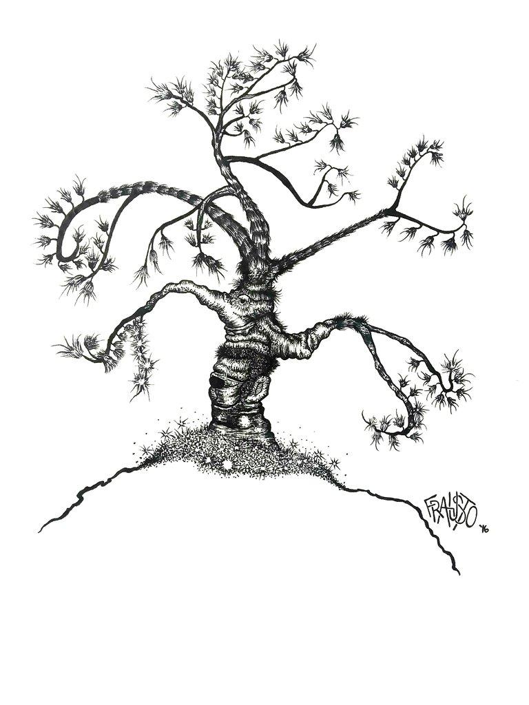 768x1024 Pen And Ink Illustrations Rick Frausto Fine Art