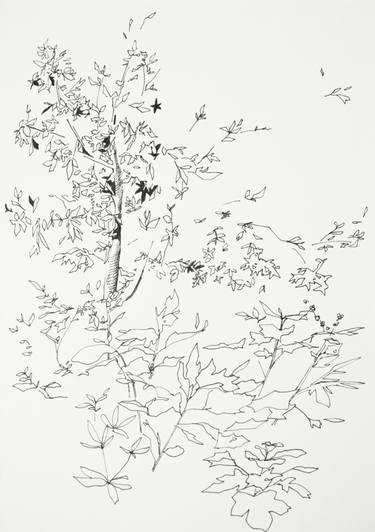 375x532 Buy Original Ink Impressionism Tree Drawings Online Saatchi Art