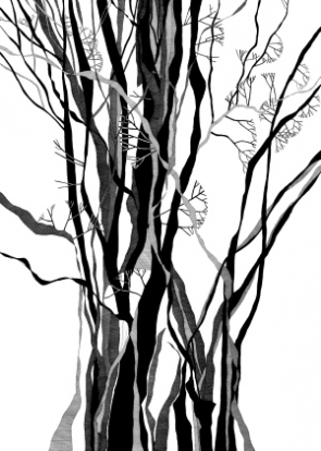 295x414 Tree Pen And Ink Drawings Gallery Fred Kennett