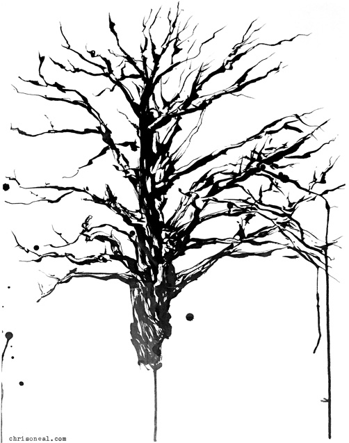 502x637 Tree Ink On Paper Drawing By Chris O'Neal, Artist And Illustrator