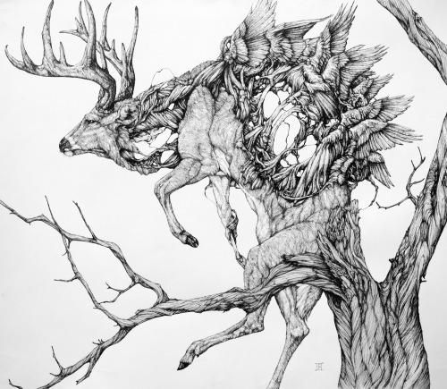 500x435 Insane Animal Illustrations By Lauren Marx Pondly