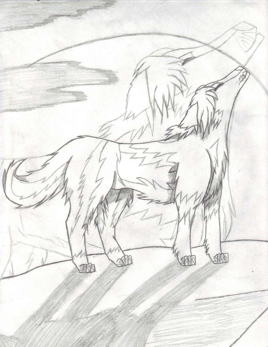900x1165 Spainhetalia Wolf Sketch By Insane White Tiger