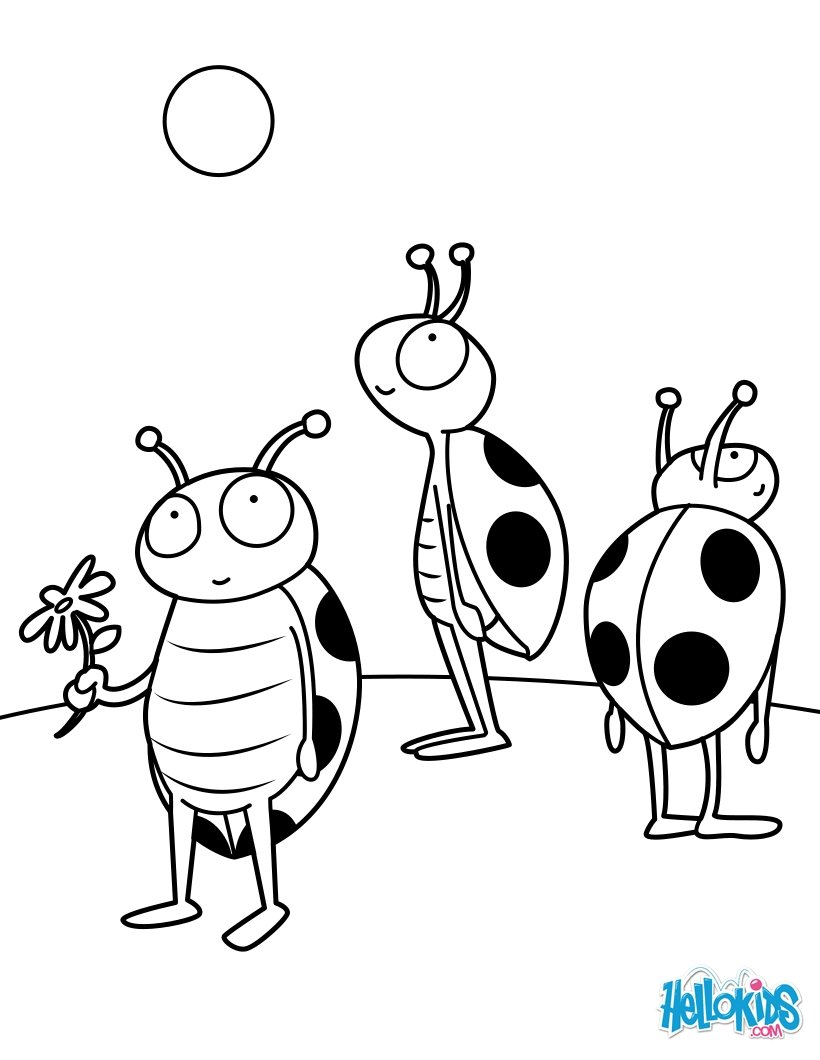 820x1060 Insect Drawing For Kids, Coloring Pages, Reading Amp Learning