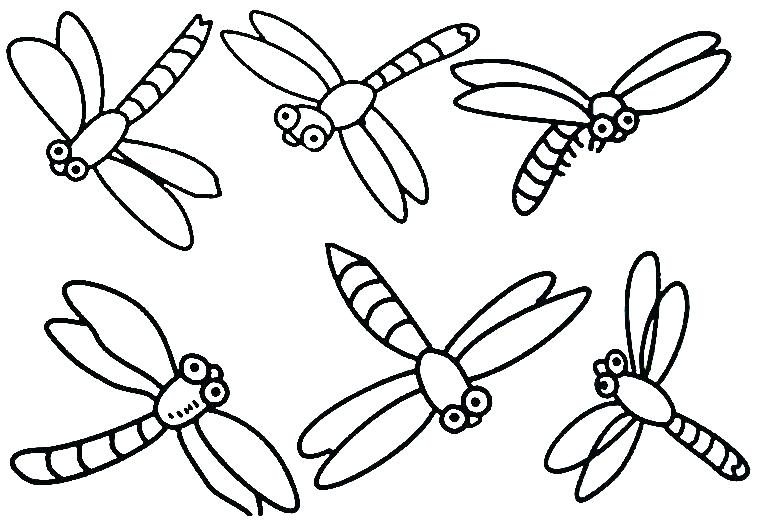 764x520 Insect Coloring Book Plus Vector Stock Black And White Cartoon