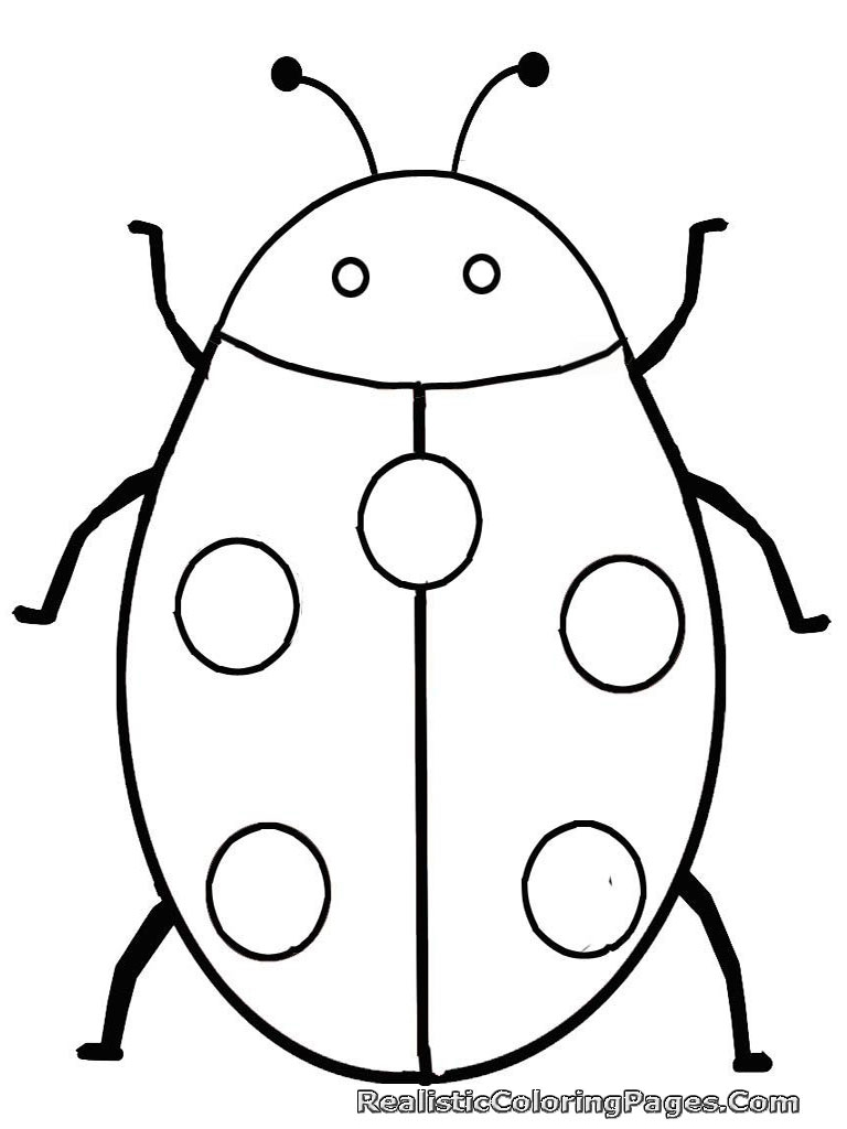 768x1024 Insect Drawing For Kids Wallpapers Hd Quality