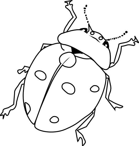 564x595 Nice Insects Coloring Pages Cool Gallery Color