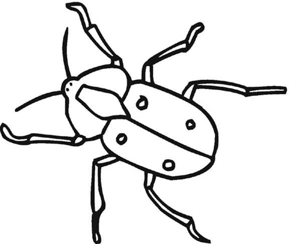 Insect Drawing For Kids At Getdrawings Com Free For Personal Use