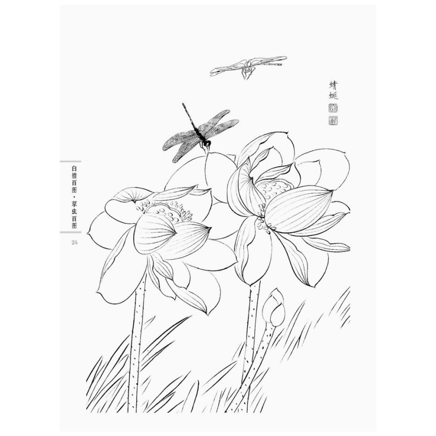 900x900 Chinese Line Drawing Grass And Insect Painting,chinese Traditional