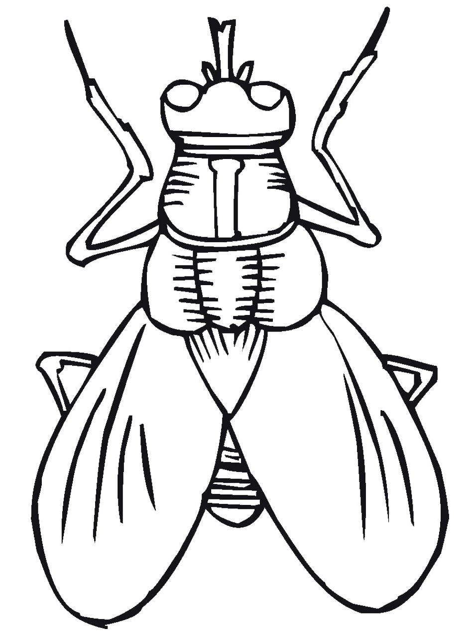 950x1266 Picture Bug Coloring Pages 98 On Line Drawings With Bug Coloring