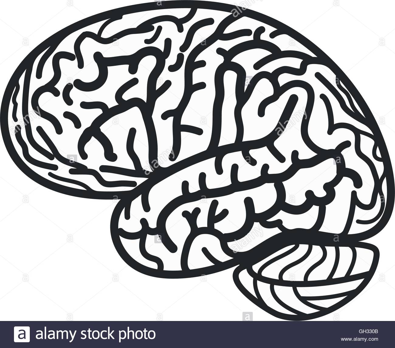 1300x1146 Isolated Black And White Brain Contour Vector Logo. Gyrus