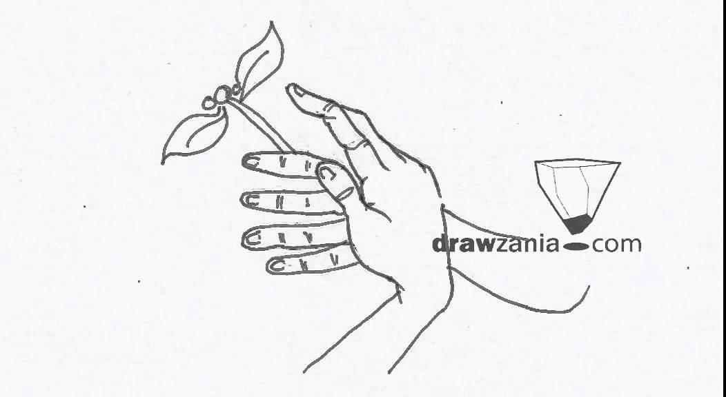 1052x576 Caricature Drawing Intermediate 25 Hands 05