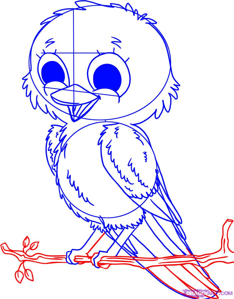 900x1148 How To Draw A Bird Step By Step Easy With Pictures Drawings