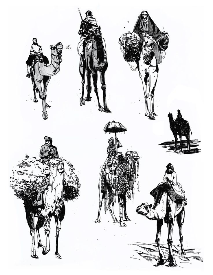 736x948 Studies Of Dudes And Their Camels. Interpret That As You May. Fv