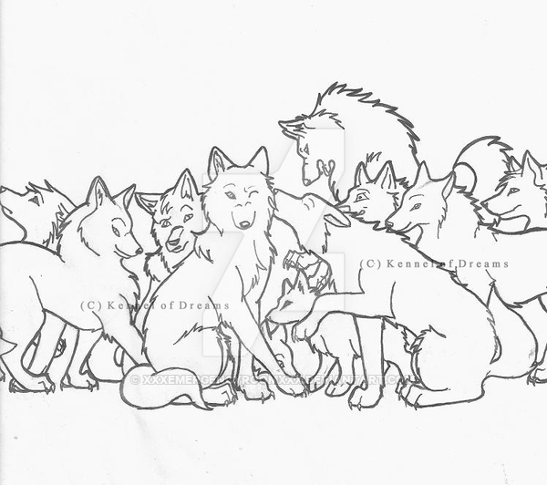 600x532 My Wolf Pack Introduction By Xxxemergencyroomxxx