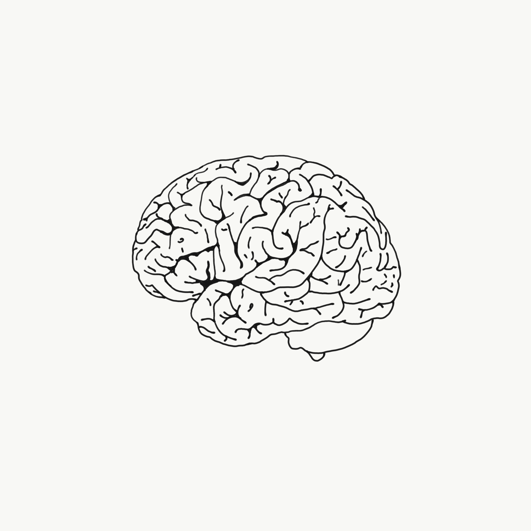2100x2100 Ipad Pro Adobe Sketch Pen Drawing Of A Brain Brain