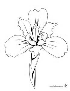 232x300 Coloring Page Iris Flower