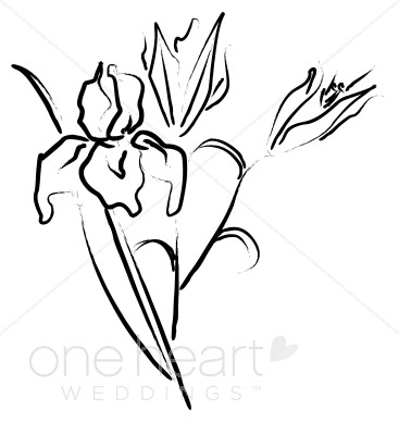 367x388 Iris Clip Art Elegant Wedding Flower Sketches