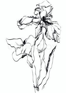 227x320 Grunge Illustration Of Iris Flower Stock Vector Colourbox