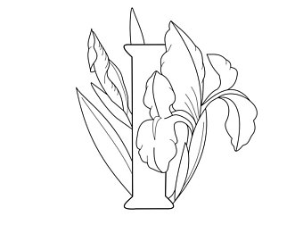 340x270 Iris Coloring Page Etsy