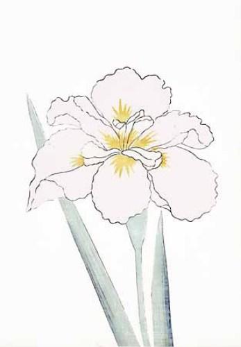 347x500 Japanese Irises I