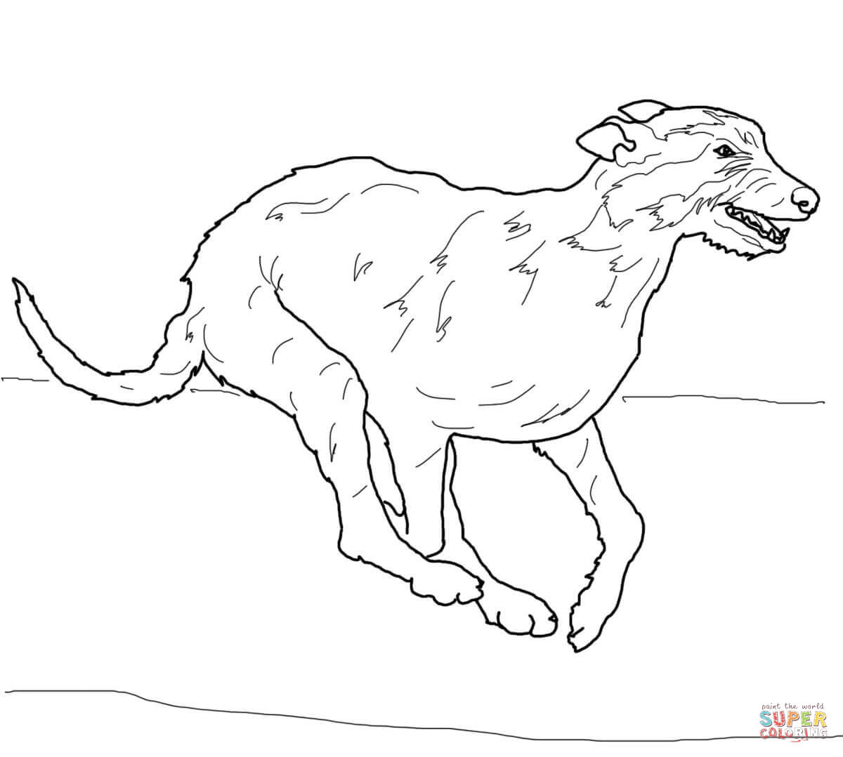 1200x1078 Irish Wolfhound Coloring Page Free Printable Coloring Pages