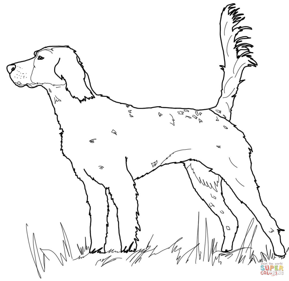 1200x1168 Irish Setter Coloring Page Free Printable Coloring Pages