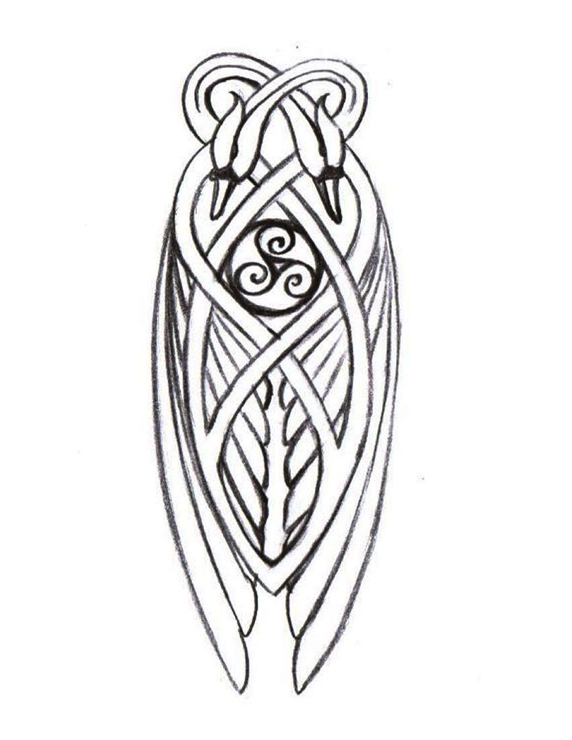 816x1056 Knotwork Swan Detail For Celtic Harp Art, Design And Typography